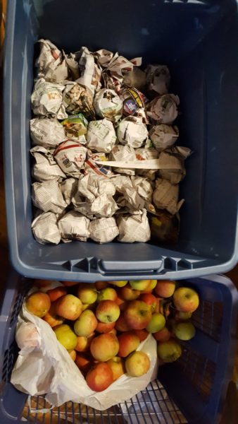 Store whole fresh apples wrapped in newspaper and placed in a plastic bin