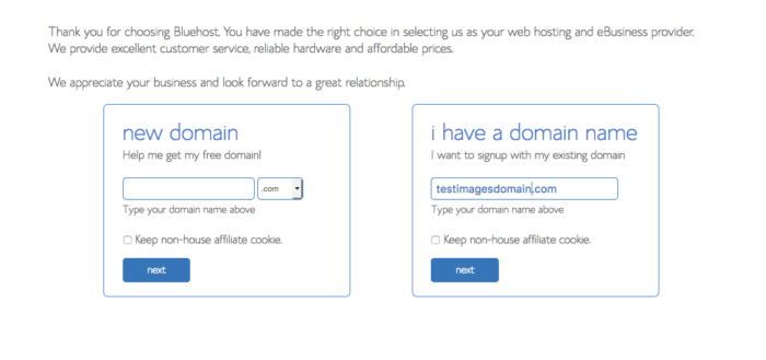 Time to enter your domain name to start a blog