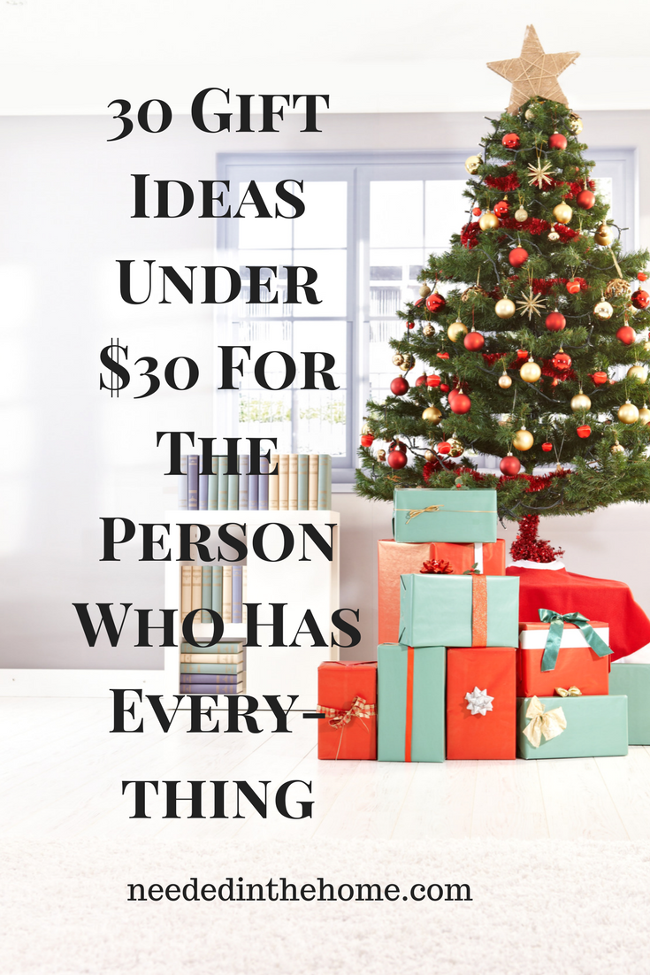 30 Gift Ideas Under $30 for the person who has everything unique budget friendly wrapped Christmas gifts under the tree neededinthehome