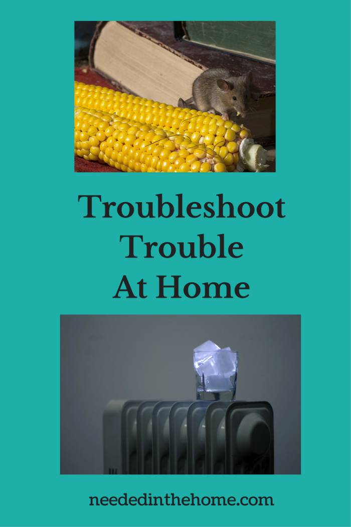 books corn mouse in the house broken furnace ice in a glass Troubleshoot Trouble At Home