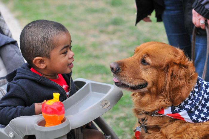 toddler boy in stroller with golden retriever dog 7 Ways That A Pet Helps Your Child's Development