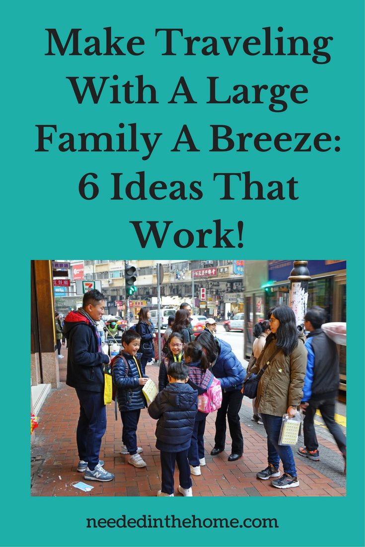 large family in a shopping center Make Traveling With A Large Family A Breeze: 6 Ideas That Work!