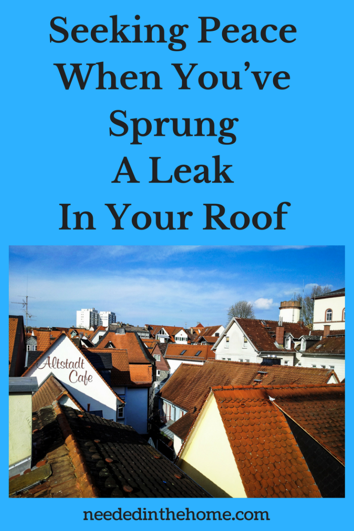 rooftops in daylight clouds  Seeking Peace When You've Sprung A Leak In Your Roof neededinthehome.com