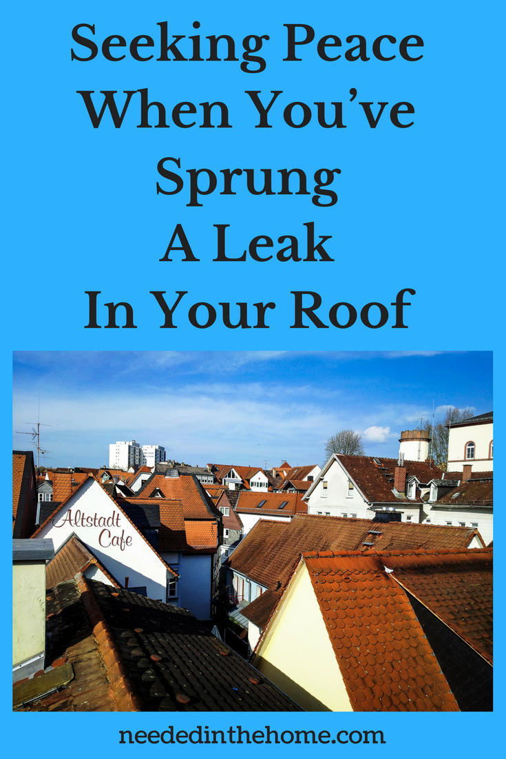 rooftops of many houses and businesses Seeking Peace When You've Sprung A Leak In Your Roof neededinthehome.com
