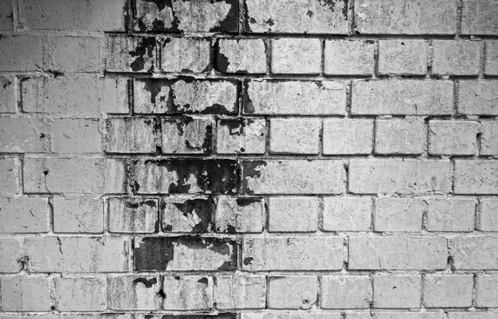 mold on brick wall Crucial Advice For Preventing Water Damage In And Around The Home