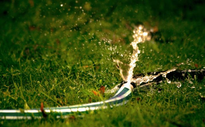 lawn sprinkler grass hose conserve water in your yard avoiding water waste doesn't mean you have to go without