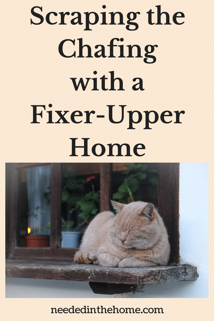 Scraping the Chafing with a Fixer-Upper Home / Scraping The Chafing To Make Lines Smoother In Fixing Up Your Fixer-Upper Home cat on wooden windowsill neededinthehome