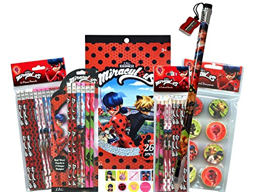 Miraculous Ladybug Stocking / Easter Basket Stuffers or Party Favors / School Supplies