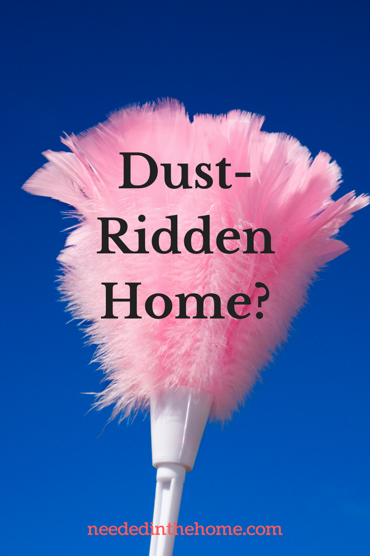 Dust-Ridden Home? feather duster neededinthehome