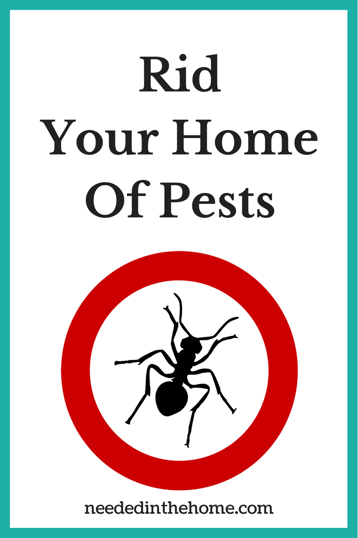 Rid your home of pests no ants mice bedbugs cockroaches etc neededinthehome