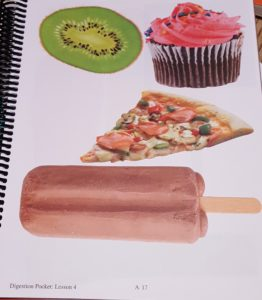 Product Review of Exploring Creation with Human Anatomy colorful pictures of food kiwi cupcake pizza fudge pop