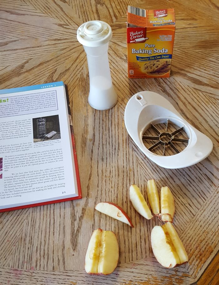 Review of Exploring Creation with Human Anatomy science experiment preparation including sliced apples salt baking soda