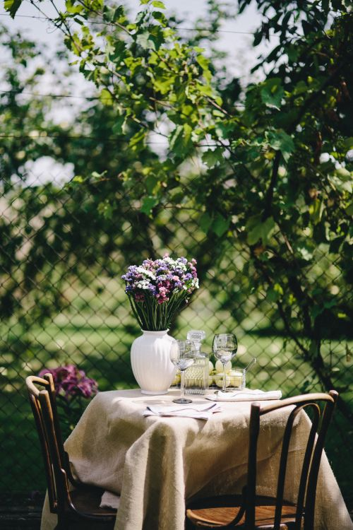 Essentials for your garden patio backyard fence table chairs flowers in vase water glasses