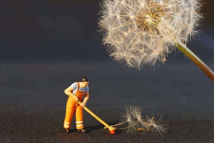 Spring cleaning - take the stress out of spring cleaning toy man sweeeping dandelion seeds away near dandelion in seed