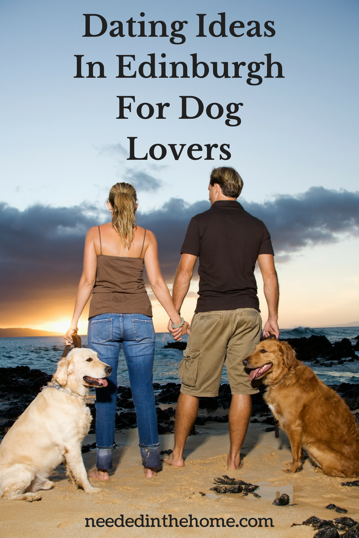 Dating Ideas In Edinburgh For Dog Lovers image of woman and man with dogs on beach at sunset neededinthehome