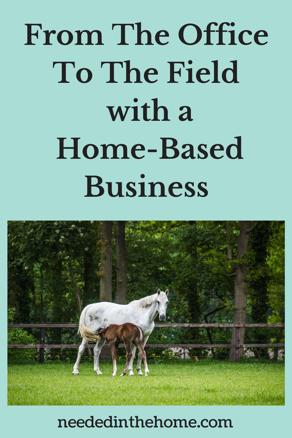 From the office to the field with a home-based business horses at a home business horse stable neededinthehome