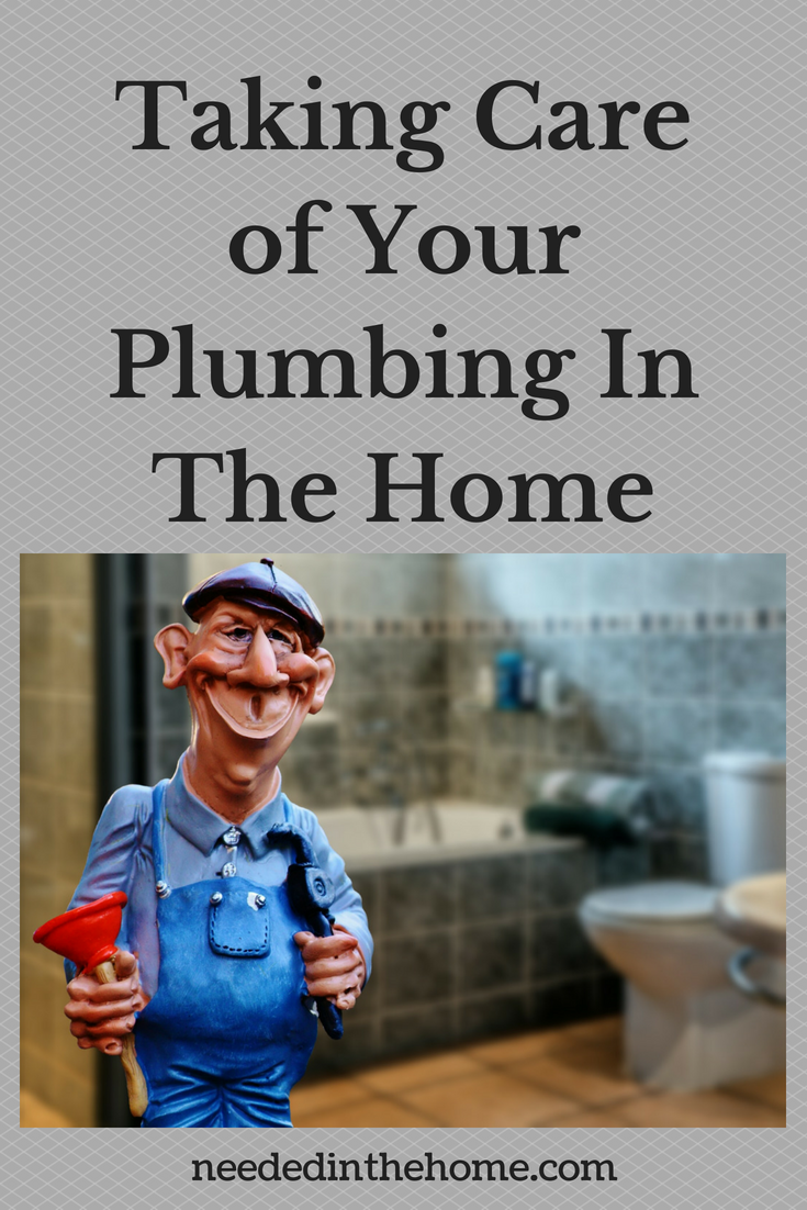 Taking Care of Your Plumbing In The Home image plumber with plunger in bathroom neededinthehome