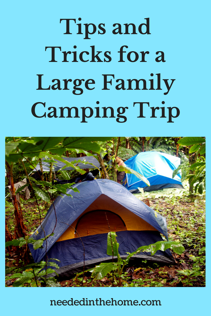 Tips and Tricks for a Large Family Camping Trip image tents in the woods for a camping trip neededinthehome