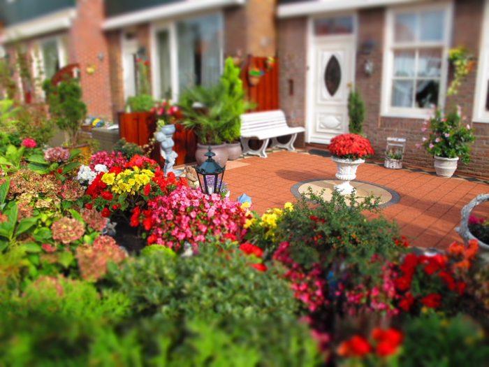 Improve their gardens image backyard garden patio flowers bench back door