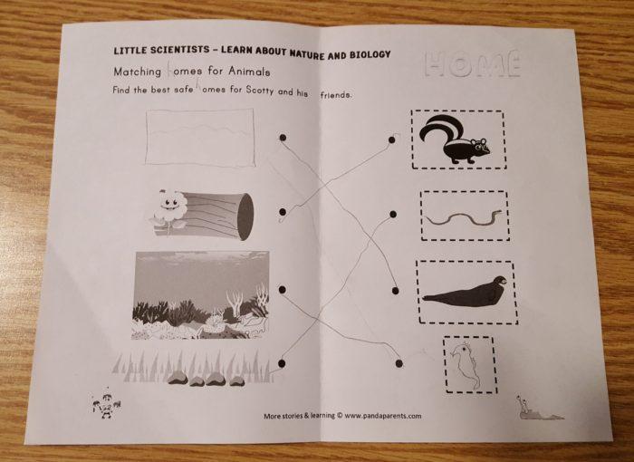 PandaParents Product Review preschool worksheet
