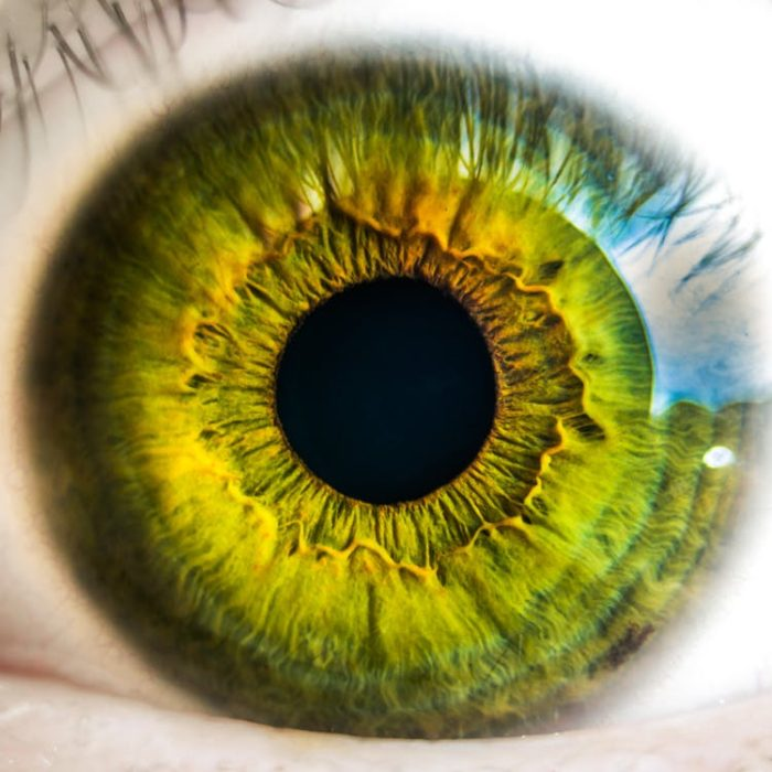 looking after your family's health eye care
