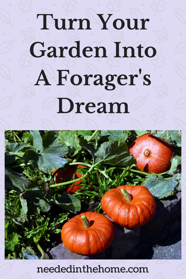 Turn Your Garden Into A Forager's Dream small pumpkins garden foliage neededinthehome