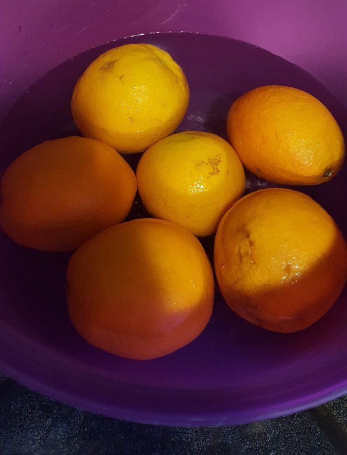 Paddington Bear Literature Based Unit Study Product Review oranges soaking to make marmalade