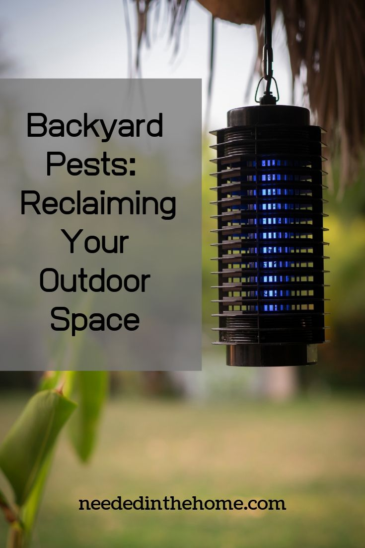 Backyard pests: reclaiming your outdoor space bug zapper light neededinthehome