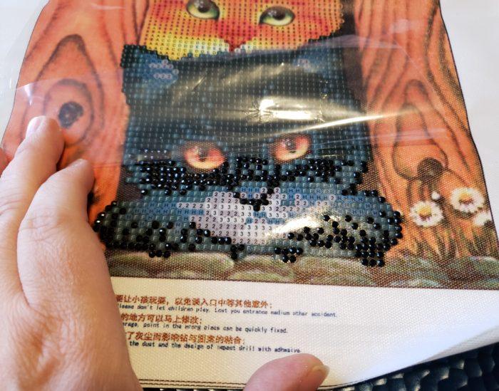 Diamond painting tutorial cat faces peel clear plastic upward working on the bottom