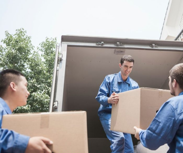 Portable metal container moving help boxes movers