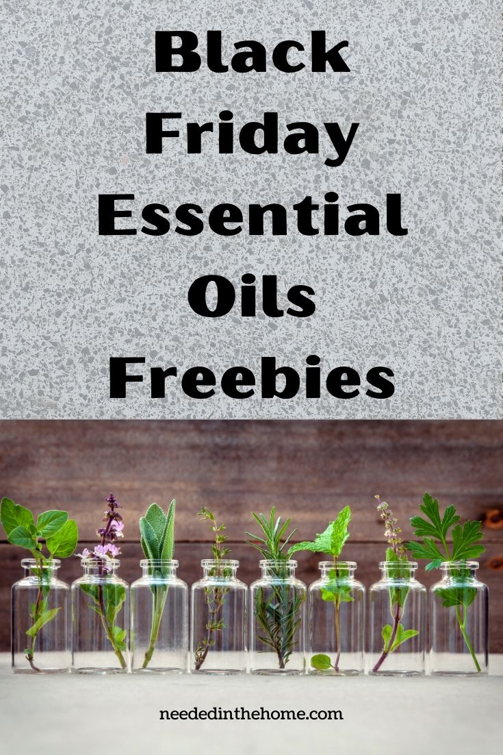 Black Friday Essential Oils Freebies plants in glass jars neededinthehome