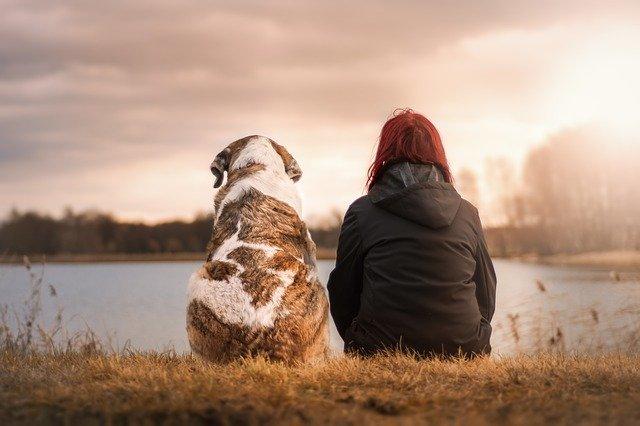 family pet dies dog woman river scene