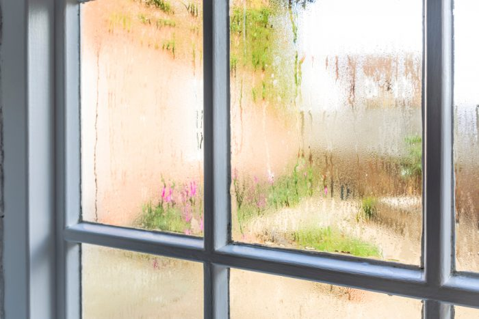 Avoid costly home repairs wet window mold