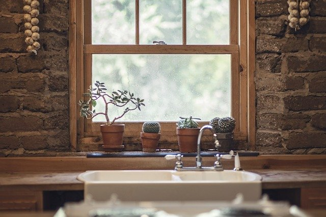 Freshen up your home for summer succulents in kitchen window