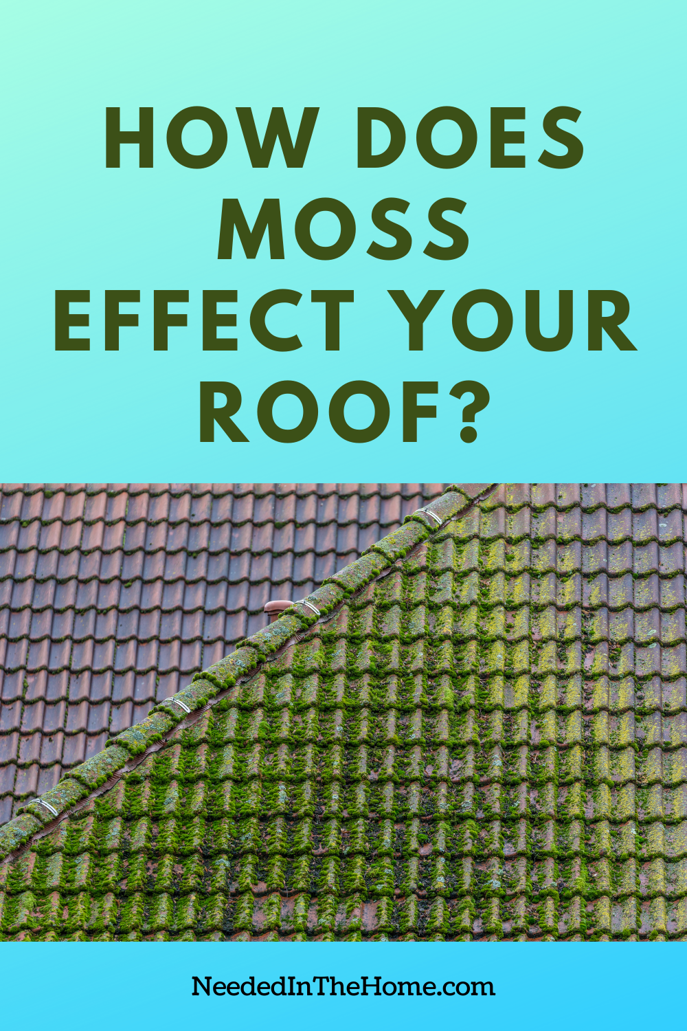 pinterest-pin-description how does moss effect your roof green moss on roof tiles neededinthehome