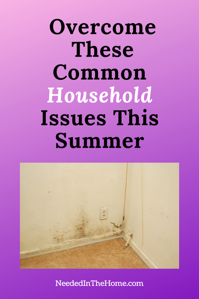 pinterest-pin-description Overcome these common household issues this summer mold in corner of home neededinthehome