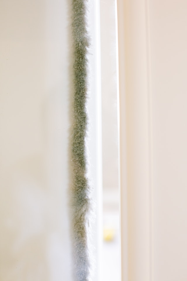 insulating your home green decor on the wall